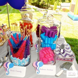 Dessert Table - Candy Bar