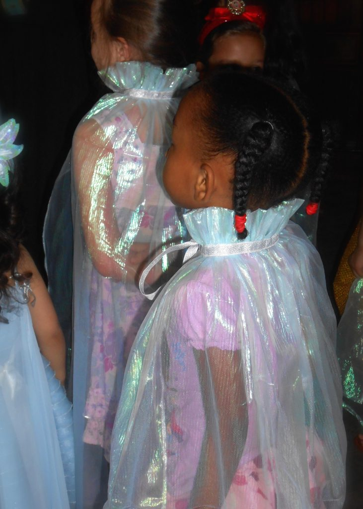 Elsa Cape Birthday Party Favor